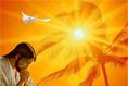 Recebereis o poder do Espírito Santo para serem minhas testemunhas - Editora Com Deus